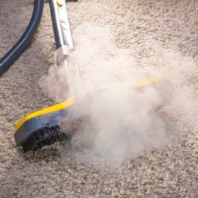 Teppich desinfizieren