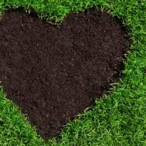 Checken Sie Ihren Rasenmäher