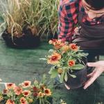So bereiten Sie Ihren Garten auf den Frühling vor!