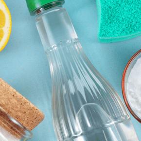 Backofen reinigen: Einfach und ohne Chemie